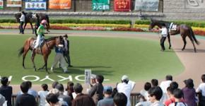 Tokyo Racecourse Fuchu