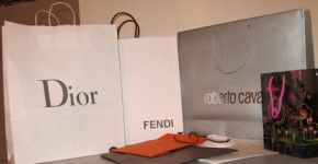 Dior Fendi Prada Cavalli Hermes Vuitton shopping bags