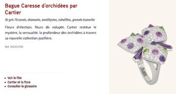 Cartier ad for Caresse d'orchidées Collection