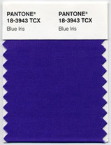 Pantone Color of the Year 2008 Blue Iris 18-3943